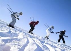 Как выбрать лыжи